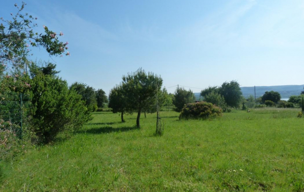 A MEZE IMMOBILIER : Ground | BOUZIGUES (34140) | 3 608 m2 | 65 000 €